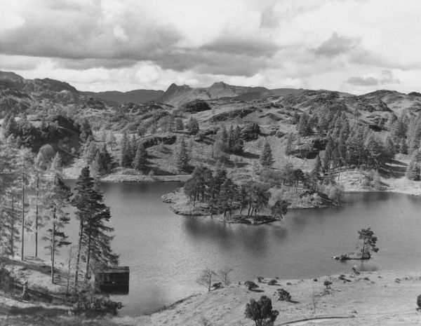 Tarn Hows, Lake Coniston, Lake District, Cumbria, England, originally created to supply water to a saw mill. Note the Langdale Pikes in the background. Date: 1960s
