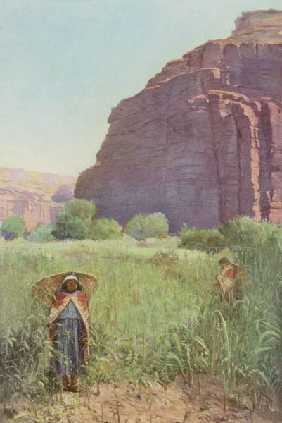 Supai women in the Grand Canyon, Arizona, working in their cornfield