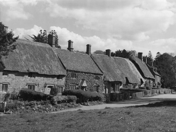 A row of idyllic thatched cottages at Great Tew, in the Cotswolds, Oxfordshire, England. Date: 1950s