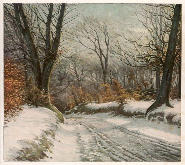 A country road in winter