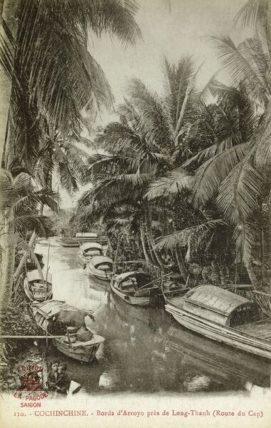 Houseboats pulled up to the Palm Tree-laden riverbanks on a creek near Long Thanh, Vietnam (on the Cape Road). Date: circa 1910