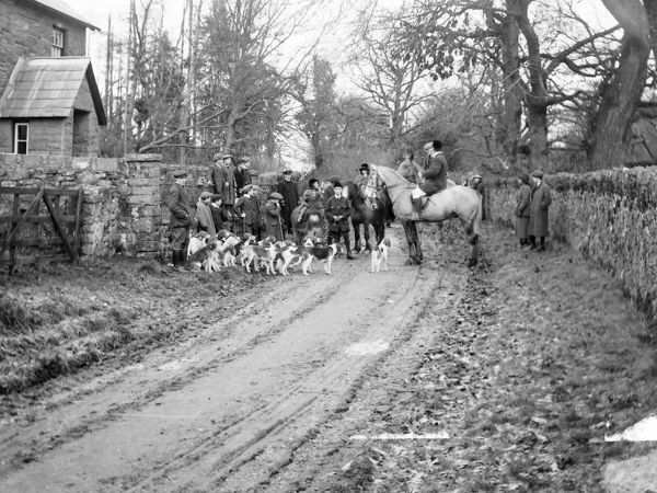 Members of the Crickhowell Hunt with horses and hounds on a country lane near Crickhowell, Powys, Mid Wales