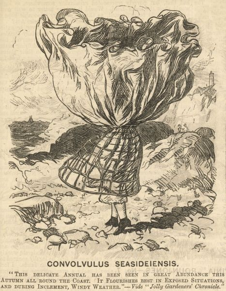 The fate that befalls fashion conscious women when visiting places susceptible to high winds. A woman's skirts are blown over her head revealing her cage crinoline