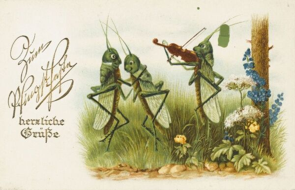 A novelty Russian postcard depicting a green grasshopper couple dancing to the tune of a fellow grasshopper playing a fiddle