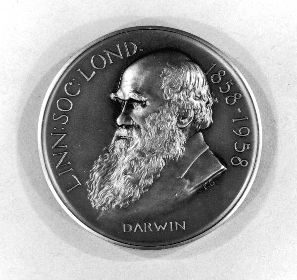 CHARLES DARWIN Naturalist, depicted on a medal of The Linnean Society