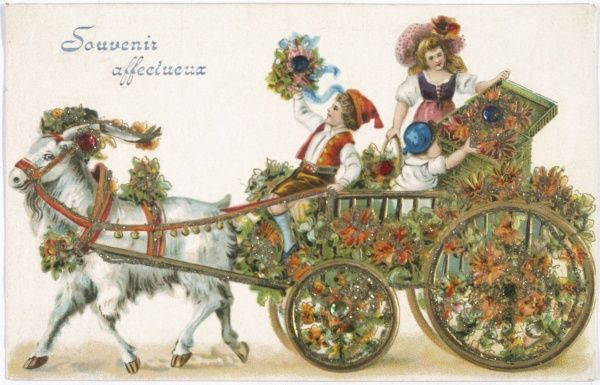Decorated goat cart
