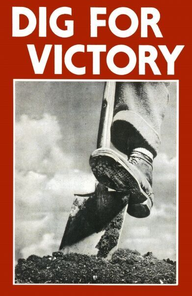 World War Two poster encouraging British civilians to dig for victory, featuring somebody doing just that