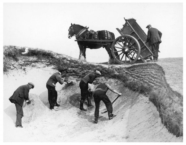 Men busy preparing the 8th bunker at Princes golf course, Sandwich, Kent, in readiness for the Open Championship in June