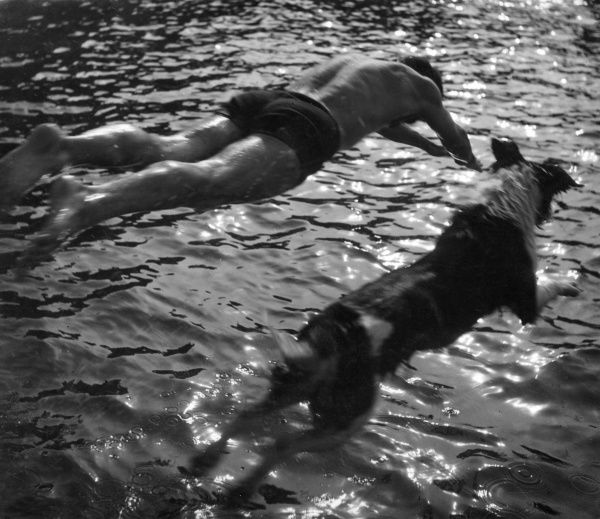 A man and his sheepdog dive into a river together! Date: 1930s