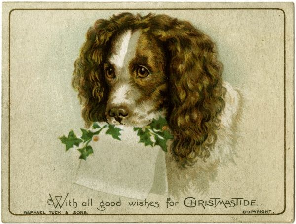 A dog carries a blank card and some holly in his mouth on the front of this Christmas card.  1890