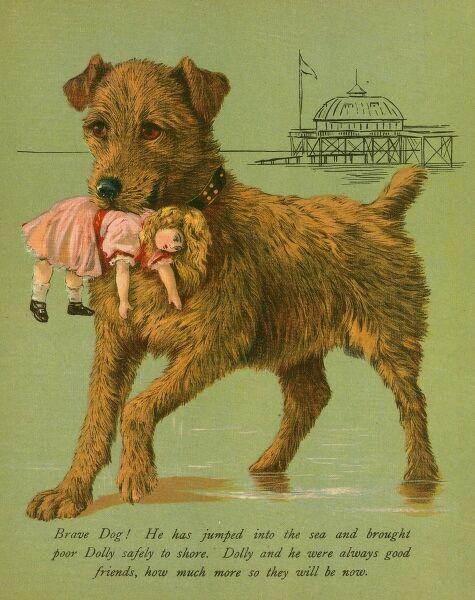 A brave Irish Terrier has rescued a doll from the sea. Date: 1880s