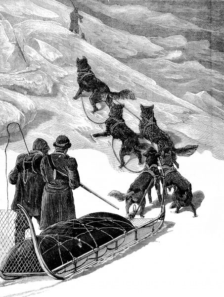 Engraving showing a dog sledge and men of the British Arctic Expedition travelling over the ice between HMS 'Alert' and HMS 'Discovery', 1876. In the summer of 1875 the British Admiralty sent Captain George Nares with two ships