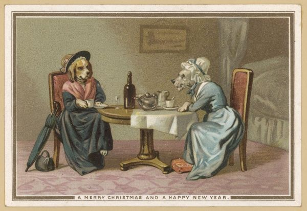 Two old lady dogs sit and have tea and exchange gossip
