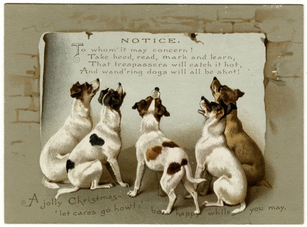 Five dogs read a notice warning them not to trespass on the property - for if they do, they are liable to be shot. Date: 1912