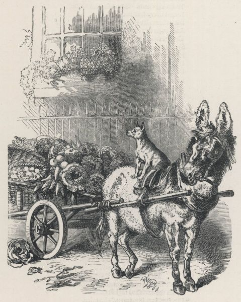 A donkey, a dog, and a cart laden with vegetables