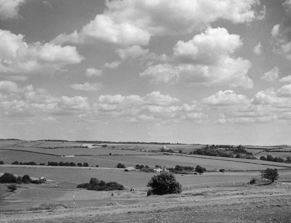 A fine panoramic view of the countryside near Tarrant Rushton, Dorset, England. Date: 1950s