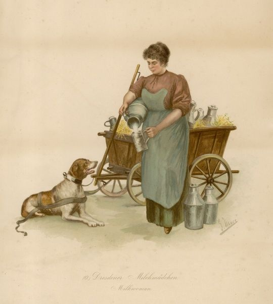 Dresdener Milchmadchen with a dog-drawn milk-cart