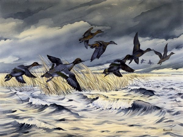 Ducks flying across rough water during a storm