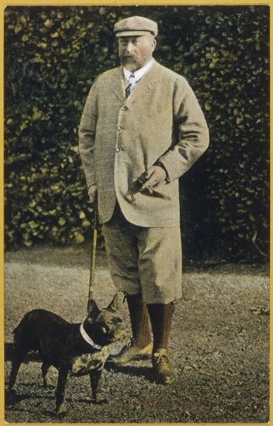 EDWARD VII, BRITISH ROYALTY in tweed suit with 'plus fours', with his dog