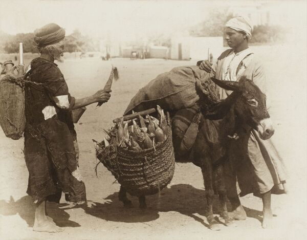 An Egyptian water seller / carrier buying corn on the cob from a trader with a laden donkey, struggling under some very full basketwork panniers
