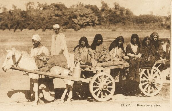 A group of Egyptian women taken for a ride on cart