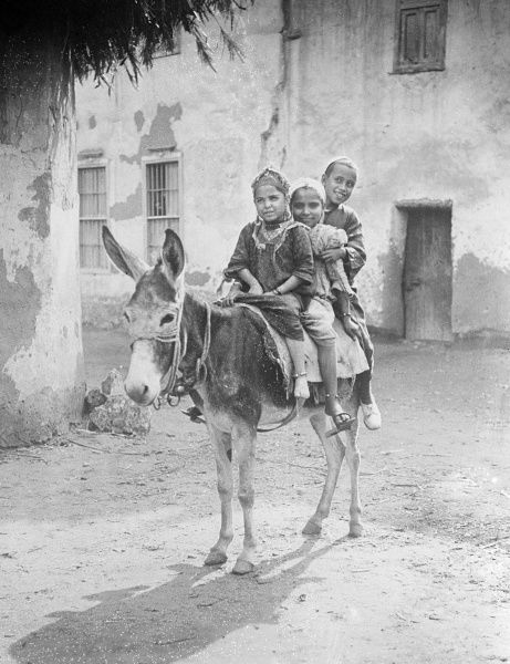 Three children enjoying a ride on a donkey in Egypt. Date: 1930s