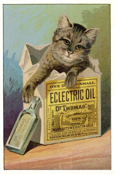 Advertisement for Dr Thomas's Electric Oil: 'the great internal and external remedy&#39