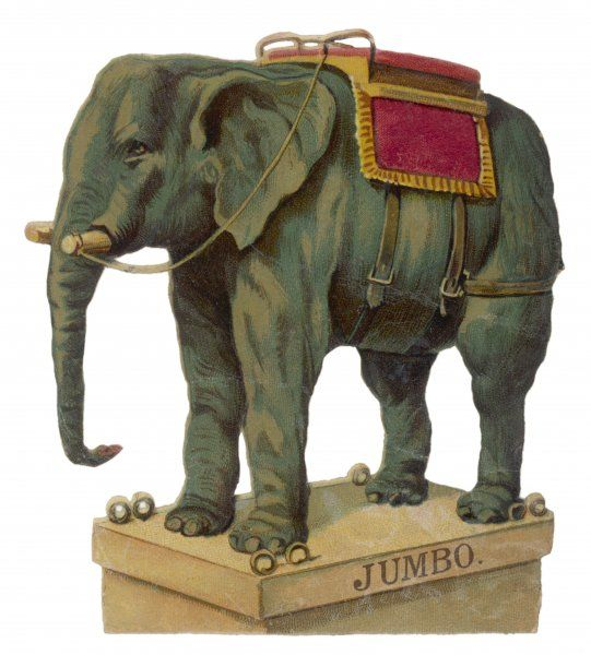 Jumbo, standing ready to give someone a ride