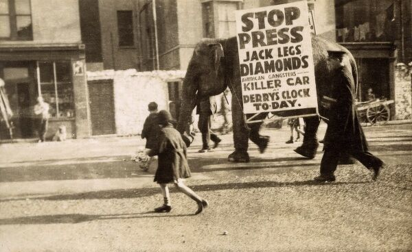 Elephants carrying sandwich boards to advertise the exhibition of the $20,000 'Killer Car' ('Direct from New York') of American Gangster and Bootlegger Jack 'Legs' Diamond (1897-1931) opposite Derry's Clock, 16 George Street