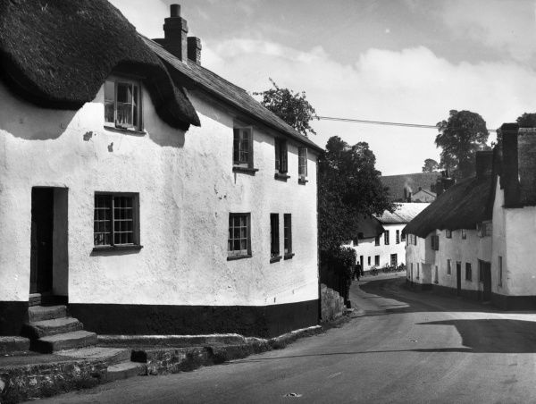 A glimpse of some typically whitewashed and thatched Devonshire cottages at Newton St. Cyres, on the Exeter to Crediton road, Devon, England. Date: 1950s