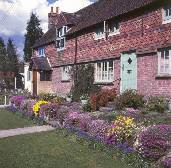 Beautiful flower beds in front of traditional English tiled cottages. Date: 1960s