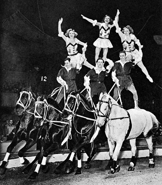 Photograph showing six equestrian acrobats forming a pyramid on top of their four horses, at the circus, 1948