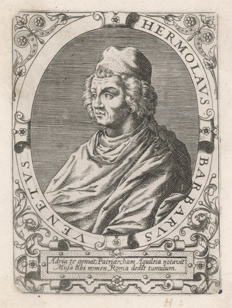 ERMOLAO BARBARO of Venice Italian scholar, translator of Aristotle (Do not confuse with his contemporary E.B. bishop of Verona, translator of Aesop.)