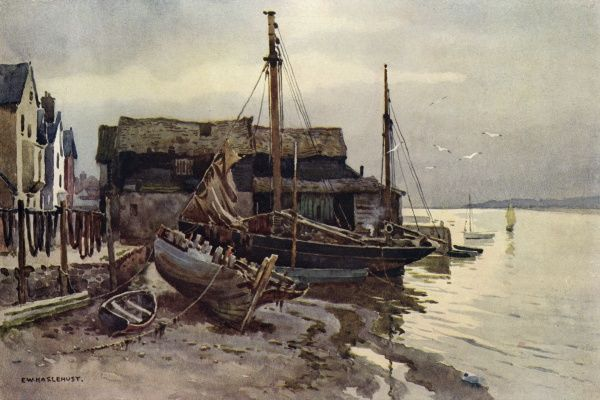 The river Exe at Topsham, Devon Date: circa 1910