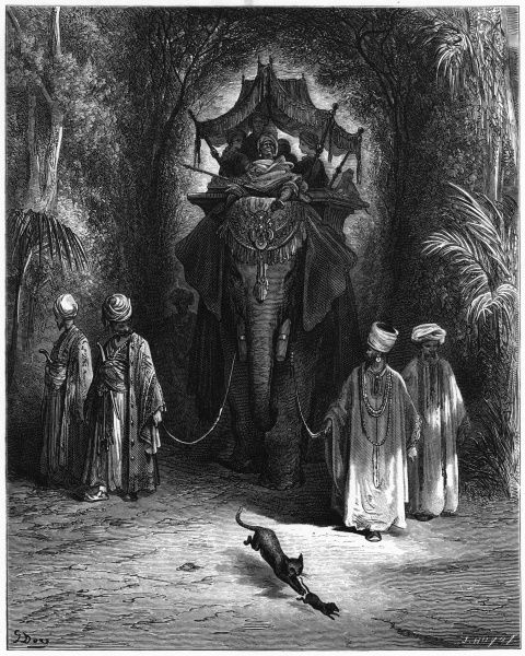 THE RAT AND THE ELEPHANT A rat claims he is as good as the elephant on whose back rides a wealthy sultan and his entourage; the sultan's cat reminds him he is vulnerable
