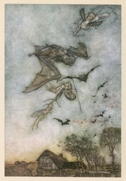 Bats are hunted by fairies for their wings