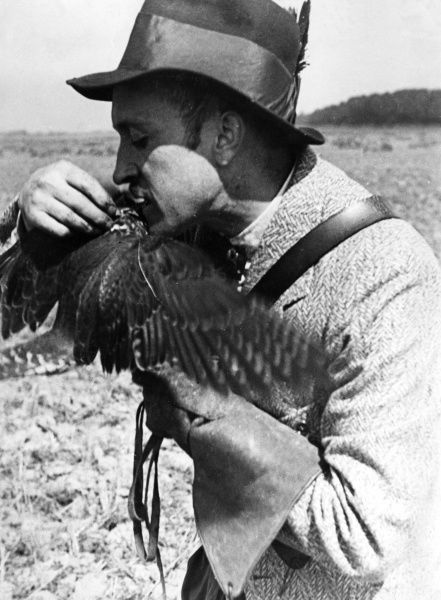 The falconer gently feeds the bird from his mouth. Date: 1930s