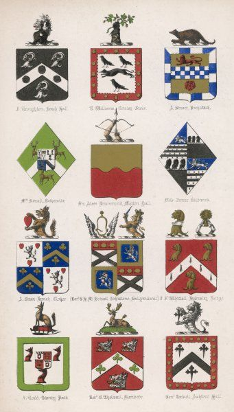 The coats of arms of twelve British families: note that of the Tranby Pack, with a fox at the top