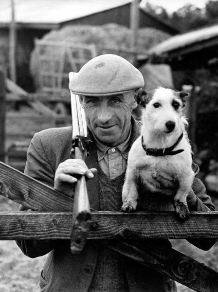 Farmer Blight of Holsworthy, a market town in West Devon, not far from the Cornish border. He is pictured here leaning on a gate, with a shotgun over his right shoulder and his trusty little dog in his left hand. (1 of 2)