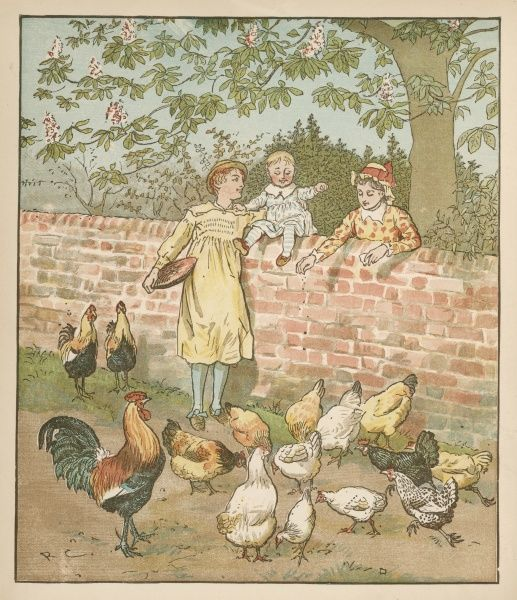 The farmer's boy with the hens