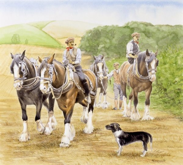 Farmers walk and lead a team of working horses across a harvested cornfield. Painting by Malcolm Greensmith