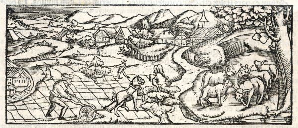 A farming scene in the middle ages (allegedly England, but more likely Germany) showing a farmer with a horse-drawn plough carving up his field, a watermill and cattle