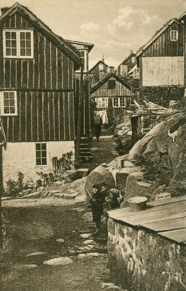A typical town on the Faroe Islands - Thorshavn - with wooden boarded houses and a couple of cheeky chappies always to be found in shot around the world when a photograph is being taken