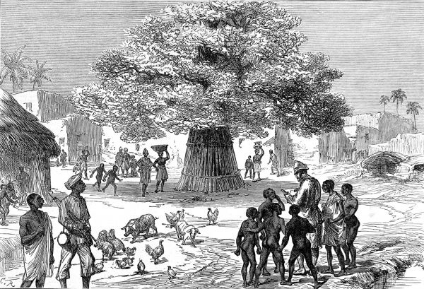 Fetish tree in a village near Cape Coast Castle towards the end of 1873. An English officer is surrounded by young native boys as he checks a document. This was sketched during the 2nd Ashanti War (1873-74)