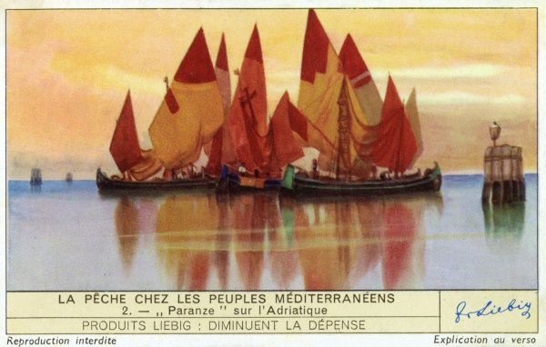 Italian 'Paranze', the characteristic fishing boats of the Adriatic. Date: 1939