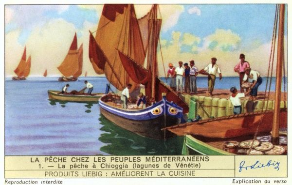Fishing at Chioggia in the lagoons of Venice. Date: 1939