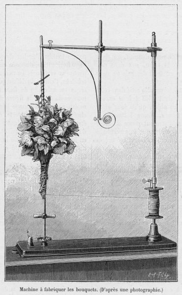 A florist's device for fastening bouquets of flowers
