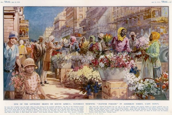 The Saturday Morning 'Flower Parade' in Adderley Street, Cape Town, South Africa. The blooms on sale are gathered from the gardens, mountain sides and valleys of the Cape Western Province