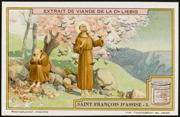 Saint Francis of Assisi preaches to the birds ; whether they will convert to Christianity is not known