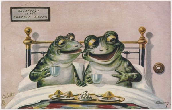 A couple of frogs enjoy breakfast in bed